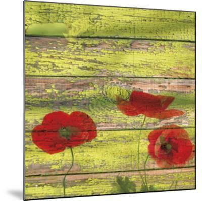Red Poppies 2-Irena Orlov-Mounted Giclee Print