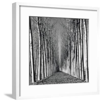 Vanishing Point-Hakan Strand-Framed Giclee Print
