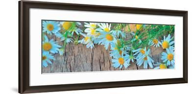 Fresh Flowers on the Wooden Table--Framed Art Print