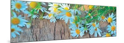 Fresh Flowers on the Wooden Table--Mounted Art Print