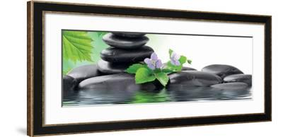 Spa Concept with Zen Stones and Flower--Framed Art Print