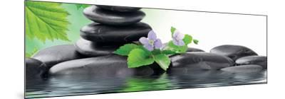 Spa Concept with Zen Stones and Flower--Mounted Art Print
