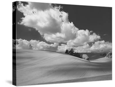 Land and Sky II B&W-Bill Philip-Stretched Canvas Print