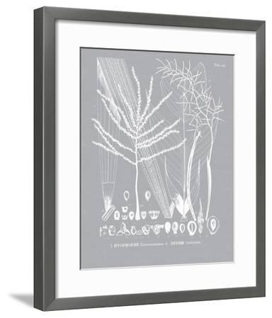 Palmyra II-Maria Mendez-Framed Giclee Print