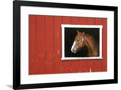 Expectations-Bill Coleman-Framed Giclee Print