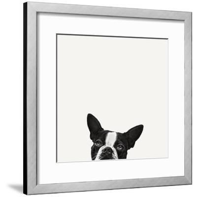 Loyalty-Jon Bertelli-Framed Art Print