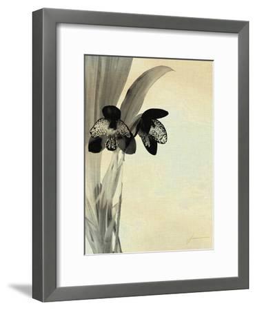 Orchid Blush Panels I-James Burghardt-Framed Art Print