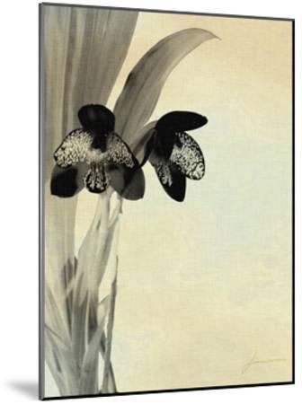 Orchid Blush Panels I-James Burghardt-Mounted Art Print