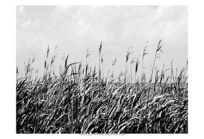 Dune Triptych III-Jeff Pica-Framed Art Print