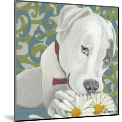 Dlynn's Dogs - Patch-Dlynn Roll-Mounted Art Print