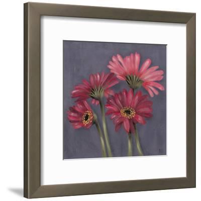 Gerbers on Grey I-Jade Reynolds-Framed Art Print