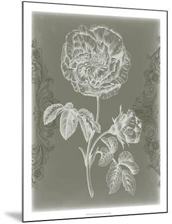 Floral Relief I-Jennifer Goldberger-Mounted Giclee Print