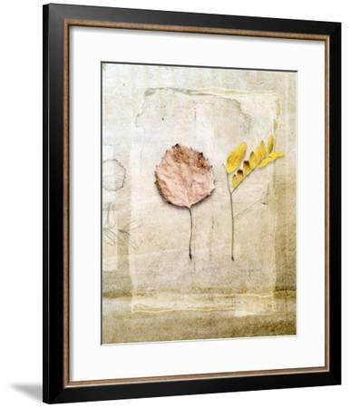 Herbarium II-Ingrid Blixt-Framed Giclee Print