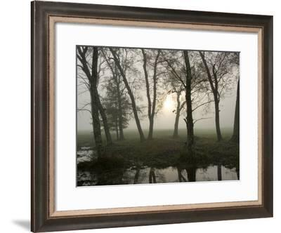 Reflections of Nature-Danny Head-Framed Giclee Print