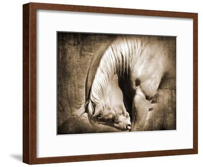 Sepia Heart Horse Left Side-Suzanne Foschino-Framed Art Print