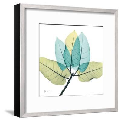Ficus Burkey-Albert Koetsier-Framed Art Print