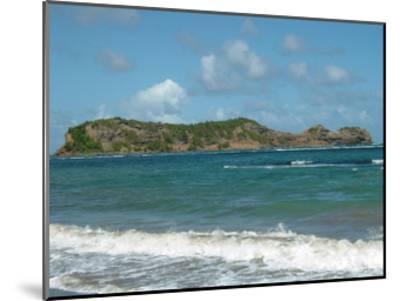 Grenada 4-Sheldon Lewis-Mounted Art Print