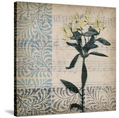 Potpourri Opera II-Jennifer Goldberger-Stretched Canvas Print