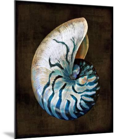 Ocean Treasure IV-Caroline Kelly-Mounted Art Print