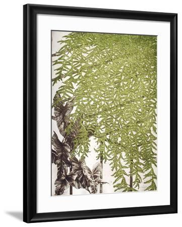 Fougères-Yannick Ballif-Framed Limited Edition