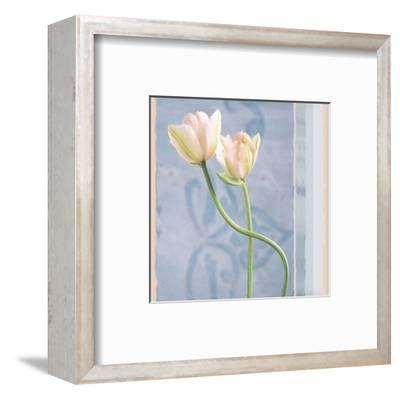 Tulip and Blue Tapestry I-Richard Sutton-Framed Art Print