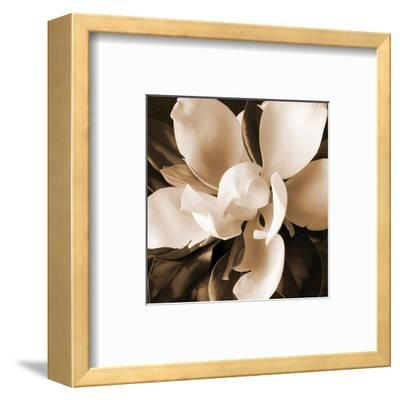 Magnolia Close Up I-Christine Zalewski-Framed Art Print