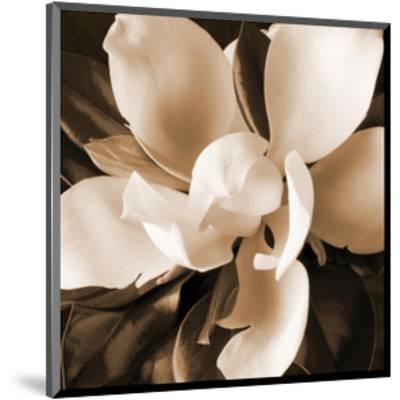 Magnolia Close Up I-Christine Zalewski-Mounted Art Print