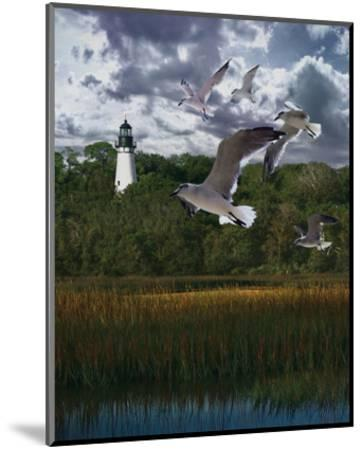 Gullage Light II-Steve Hunziker-Mounted Art Print