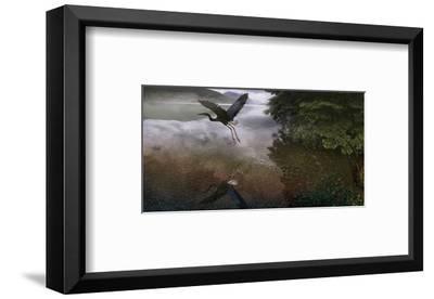 Taking Flight-Steve Hunziker-Framed Art Print