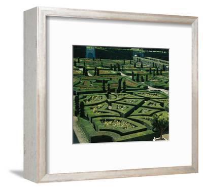 Somptuous Garden III--Framed Art Print