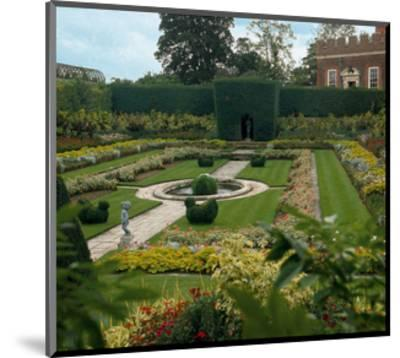 Somptuous Garden VII--Mounted Art Print