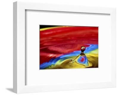 The Great Divide-Connie Publicover-Framed Art Print