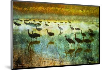 Cranes in Mist I-Chris Vest-Mounted Art Print