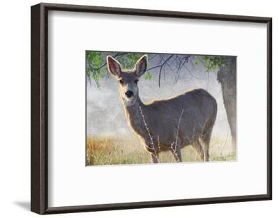 Spring Doe-Chris Vest-Framed Art Print