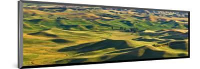 La Palouse Panorama-Richard Desmarais-Mounted Art Print