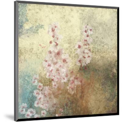 Cherry Blossoms 2-Rick Novak-Mounted Art Print