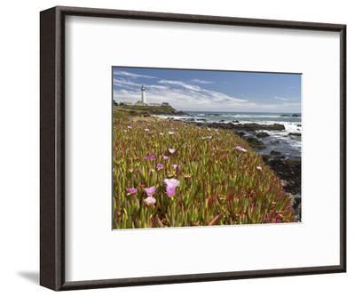 Pigeon Point 1-Michael Polk-Framed Art Print