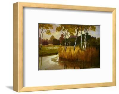 Reeds Birchs and Water II-Graham Reynolds-Framed Art Print