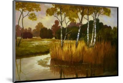 Reeds Birchs and Water II-Graham Reynolds-Mounted Art Print