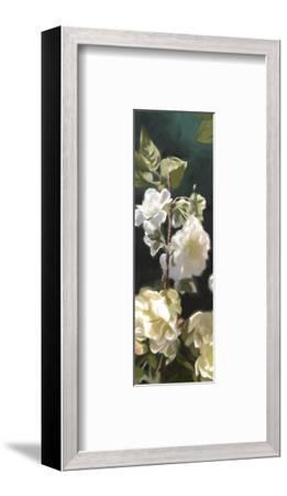 Roses 04-Rick Novak-Framed Art Print