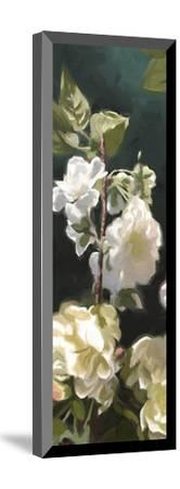 Roses 04-Rick Novak-Mounted Art Print