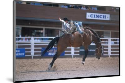 Rodeo at Calgary Stampede, Calgary, Alberta, Canada--Mounted Art Print