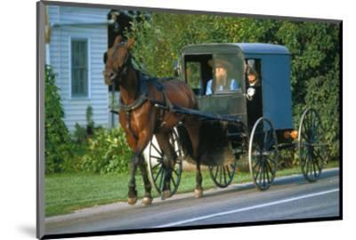 Amish in a carriage, Pennsylvania, USA--Mounted Art Print