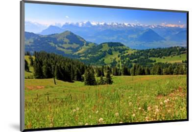 Landscape on Rigi-Kulm with View of Lake Lucerne and the Urner Alps, Canton of Lucerne, Switzerland--Mounted Art Print