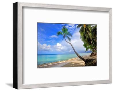Beach at The Sandpiper Hotel, Holetown, St. James, Barbados, Caribbean--Framed Art Print