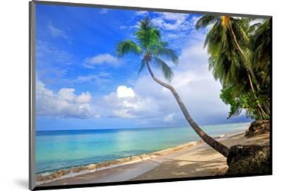 Beach at The Sandpiper Hotel, Holetown, St. James, Barbados, Caribbean--Mounted Art Print