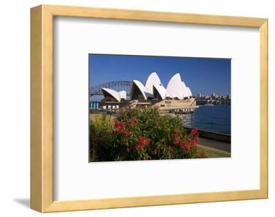 Opera House, Sydney, New South Wales, Australia--Framed Art Print