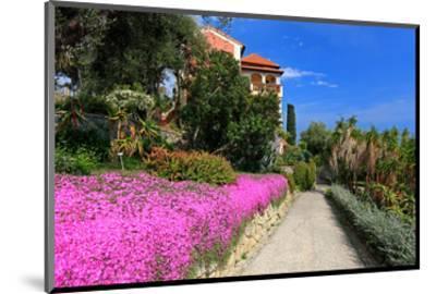 Path at Hanbury Botanic Gardens near Ventimiglia, Province of Imperia, Liguria, Italy--Mounted Art Print