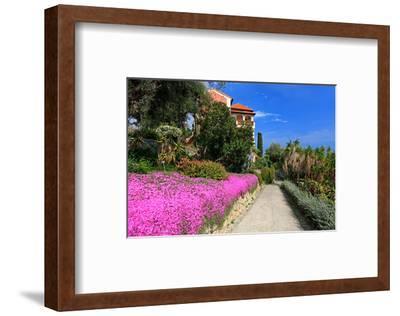 Path at Hanbury Botanic Gardens near Ventimiglia, Province of Imperia, Liguria, Italy--Framed Art Print