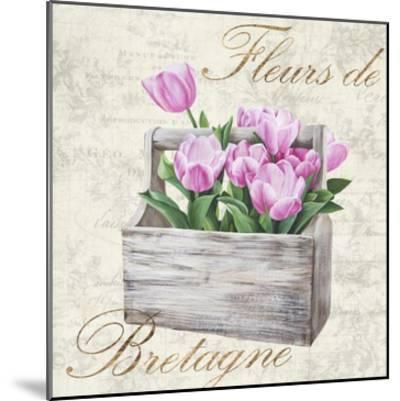 Fleurs de Bretagne-Remy Dellal-Mounted Art Print